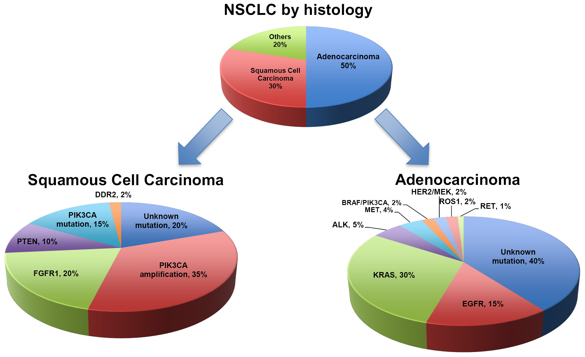 What is non-small cell carcinoma?